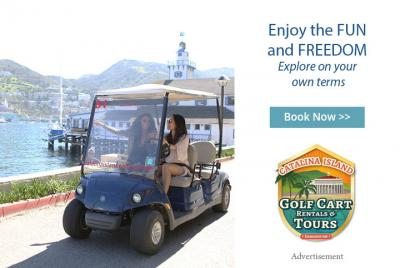 Catalina Island Golf Cart Rentals & Tours - Enjoy the Fun and Freedom, Explore on your own terms. Click to Book Now!