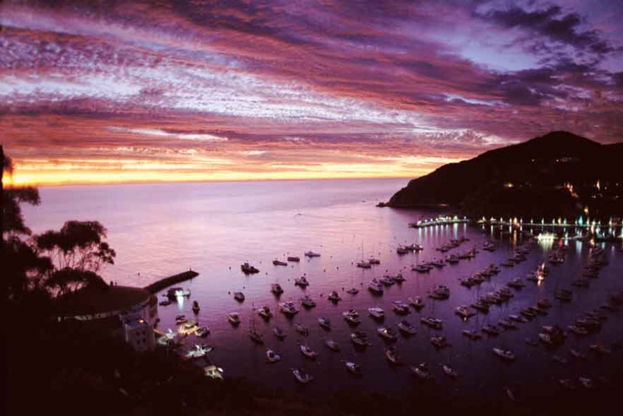 A view high up in the hills of Avalon Harbor at sunset adds a spooks atmosphere when taking the Ghost Tour