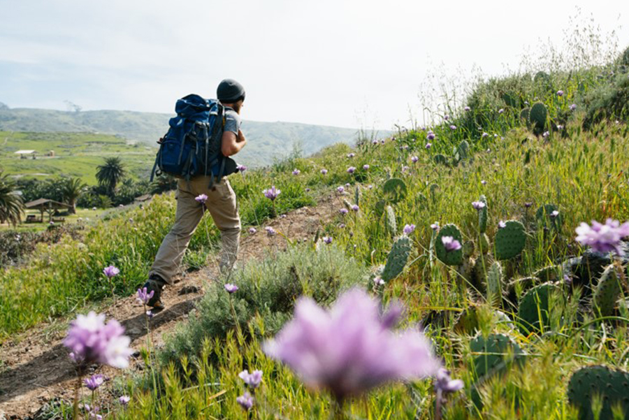 Catalina Island offers camping and hiking tails for every level.