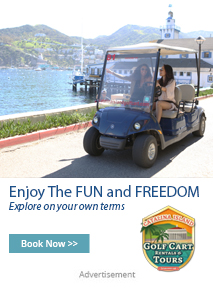 Catalina Island Golf Cart. Enjoy the fun and freedom of your own personal golf cart