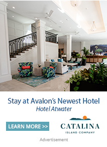 Hotel Atwater newest Avalon Hotel