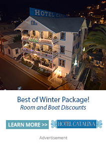 Best of winter packages at Hotel Catalina